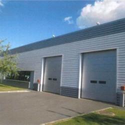 Location Local d'activités Roissy-en-France 651 m²