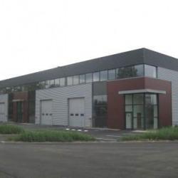 Location Local d'activités Élancourt (78990)