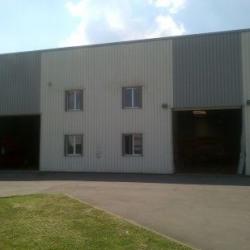 Location Local d'activités Ballainvilliers (91160)
