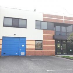 Location Entrepôt Champs-sur-Marne 573 m²