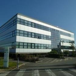 Location Bureau Toulouse 96 m²