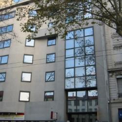 Location Bureau Lyon 7ème 253 m²