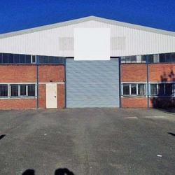 Location Local d'activités Lesquin 1016 m²