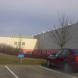 Location Local d'activités Rosheim 1400 m²