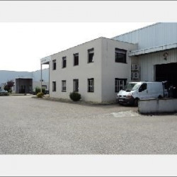 Location Local commercial Chassieu 2613 m²