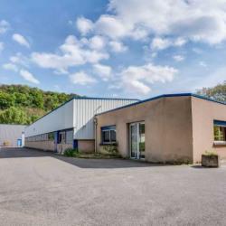 Vente Local d'activités Fleurieu-sur-Saône 1350 m²