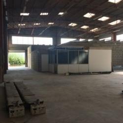Location Local d'activités Rennes 420 m²