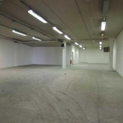 Location Local d'activités Châtillon 772 m²