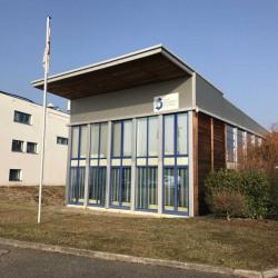 Vente Bureau Entzheim (67960)