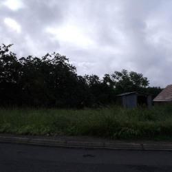 Vente Terrain Fercé-sur-Sarthe 809 m²