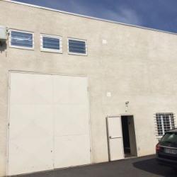 Location Local d'activités Mornant 285 m²