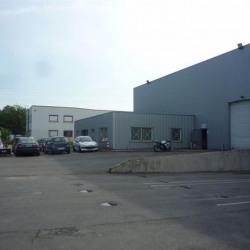 Vente Local d'activités Villevaudé 3089 m²