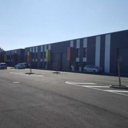 Vente Local d'activités Corbas 5611 m²