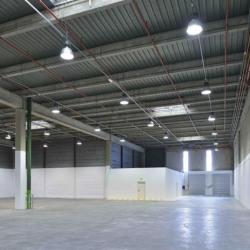 Location Local d'activités Fontenay-sous-Bois 1565 m²