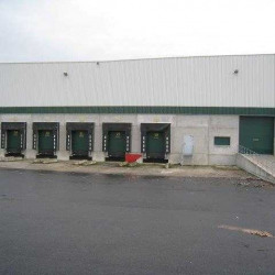 Location Entrepôt Pierrelaye 10540 m²