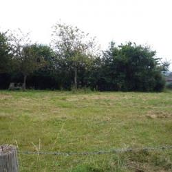 Vente Terrain Montilly-sur-Noireau 1600 m²