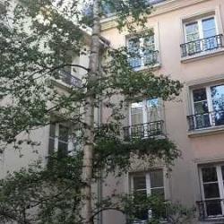 Location Bureau Saint-Germain-en-Laye 55 m²