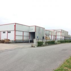 Vente Local d'activités Vannes 6700 m²
