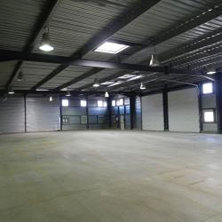Location Entrepôt Vert-Saint-Denis 780 m²
