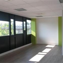 Location Bureau Vénissieux 85 m²