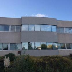 Location Bureau Toulouse 190 m²