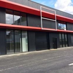 Vente Local d'activités Rennes 200 m²