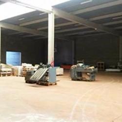 Location Local d'activités Toulouse 4639 m²