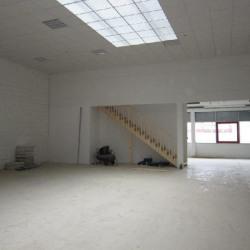 Vente Local d'activités Savigny-le-Temple 390 m²