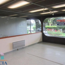 Vente Local commercial Orléans (45000)