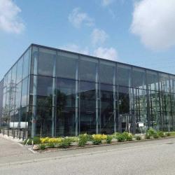 Vente Entrepôt Mundolsheim 1098 m²