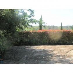 Vente Terrain Uzès 2450 m²