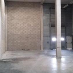 Location Local d'activités Émerainville 458 m²