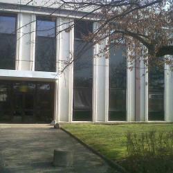 Location Local d'activités Limonest 1300 m²