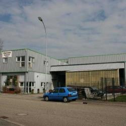 Vente Entrepôt Reichstett 1500 m²