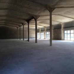 Location Local d'activités Nancy 500 m²