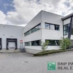 Location Local d'activités Wissous 2000 m²
