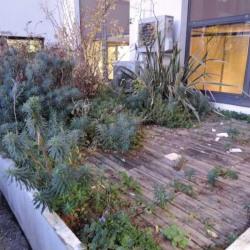 Location Bureau Issy-les-Moulineaux 426 m²