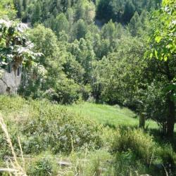Vente Terrain Risoul 410 m²
