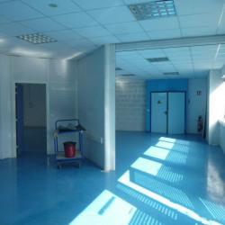 Location Local d'activités Savigny-le-Temple 370 m²