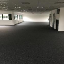 Location Local d'activités Gennevilliers 807 m²