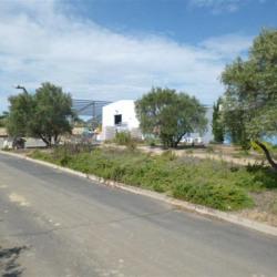 Location Local d'activités Pézenas 105 m²