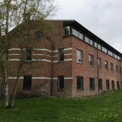 Vente Bureau Villeneuve-d'Ascq 900 m²