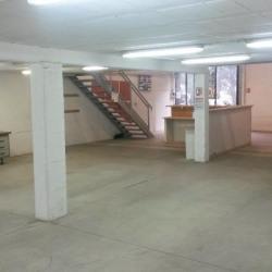 Location Local d'activités Saint-Jean-de-Védas 296 m²