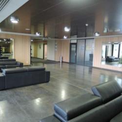 Location Bureau Lieusaint 101,8 m²