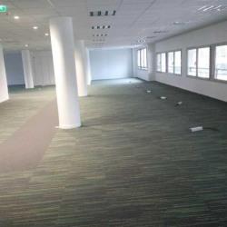 Location Bureau Maisons-Alfort 825,82 m²