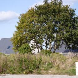 Vente Terrain Larmor-Plage 410 m²
