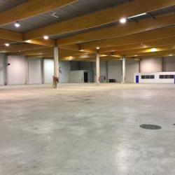 Location Entrepôt Meaux 2918 m²