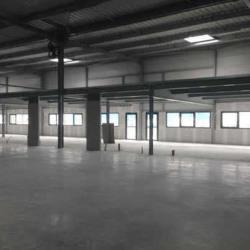 Location Local d'activités Canéjan 471 m²