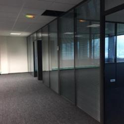 Location Entrepôt Bry-sur-Marne 291 m²
