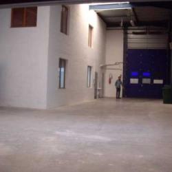 Location Local d'activités Sainte-Geneviève-des-Bois 450 m²